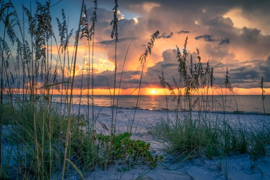 This is Bean Point which is at the end of Anna Maria Island here in central Florida. When I arrived a group of people were watching the last remnants of a waterspout that seemed more a curiosity than any real danger. It's no wonder that meteorologists like this area. Changing subjects, I've recently come to learn that these tall grasses are known as sea oats. That's cool, but what I really want to know is if they're gluten free. Okay, that was dumb.