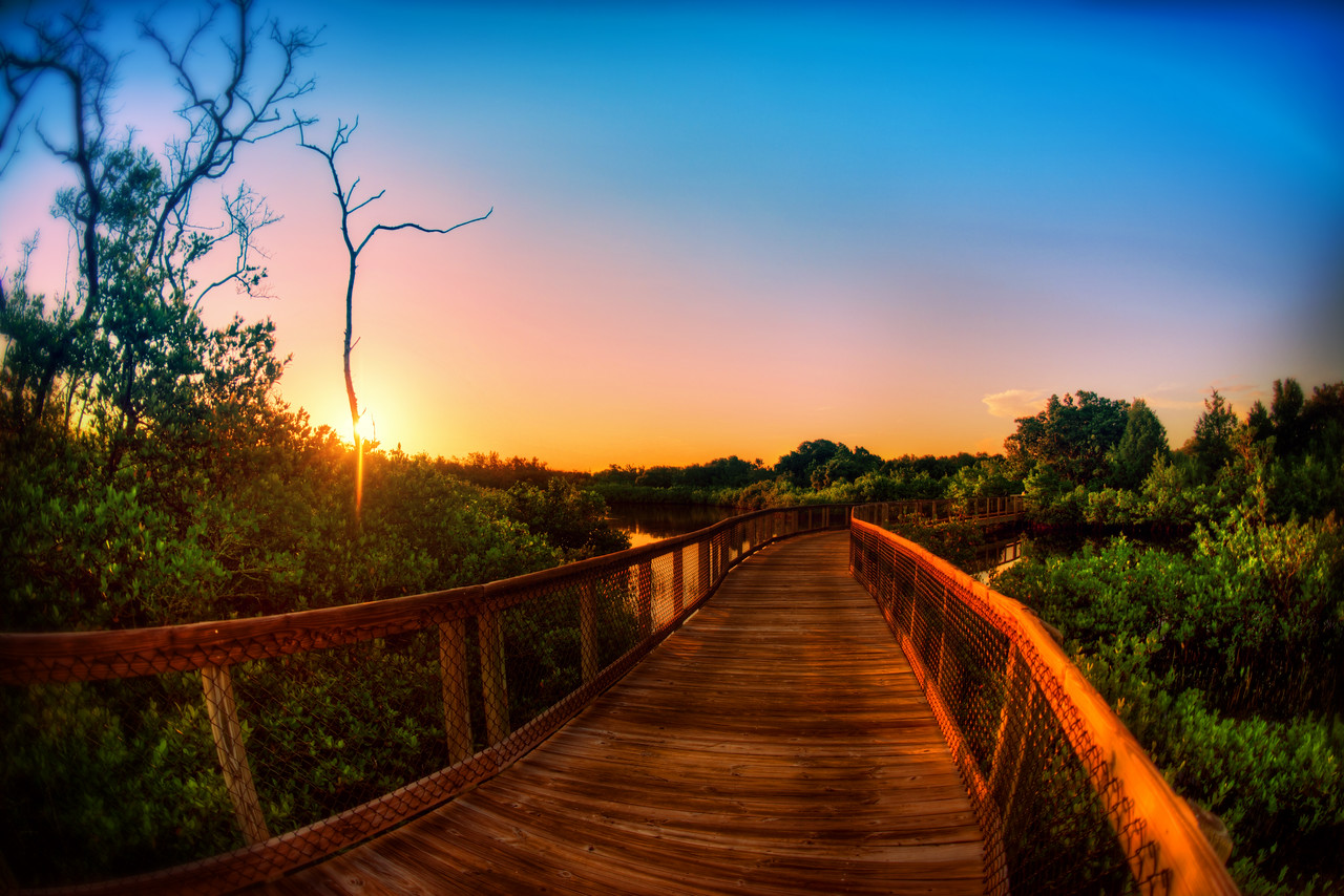 This is another shot of Emerson Point in Palmetto Florida. I love this place in the morning, it's so quite and I'm likely to see Osprey, Eagles, Great Herons, any number of fish and a beautiful sunrise. The Parks department built these wooden walkways across the Mangroves to view the ecosystems at work up close. And when you're done you can pickup a fresh Duncan Donuts coffee on your way home. Another morning in paradise, eh?