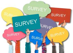 Survey – Your opinion about your rights