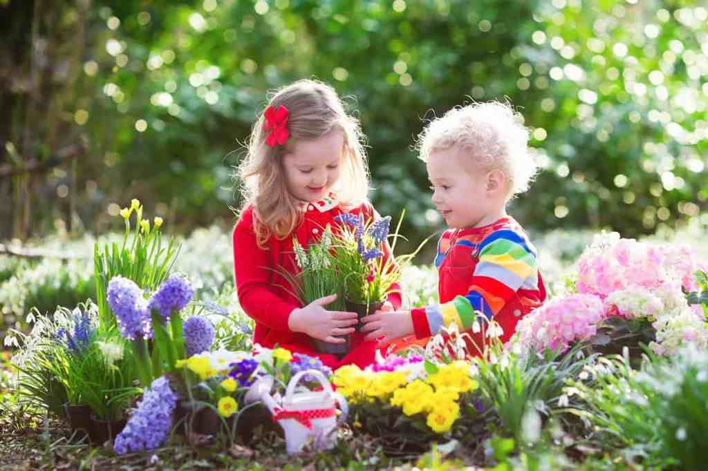 Plant Flower with Kids