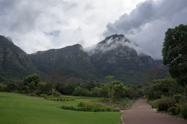 Kirstenbosch Zuid Afrika