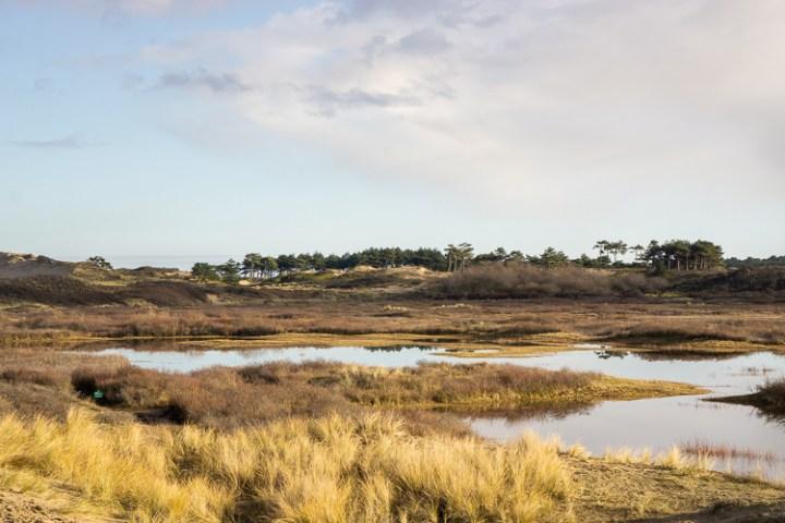 Uitzicht Zuid Kennemerland