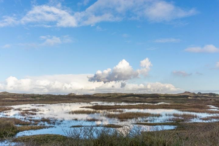 Landschap Zuid Kennemerland