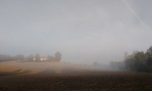 Fog in Aroue.