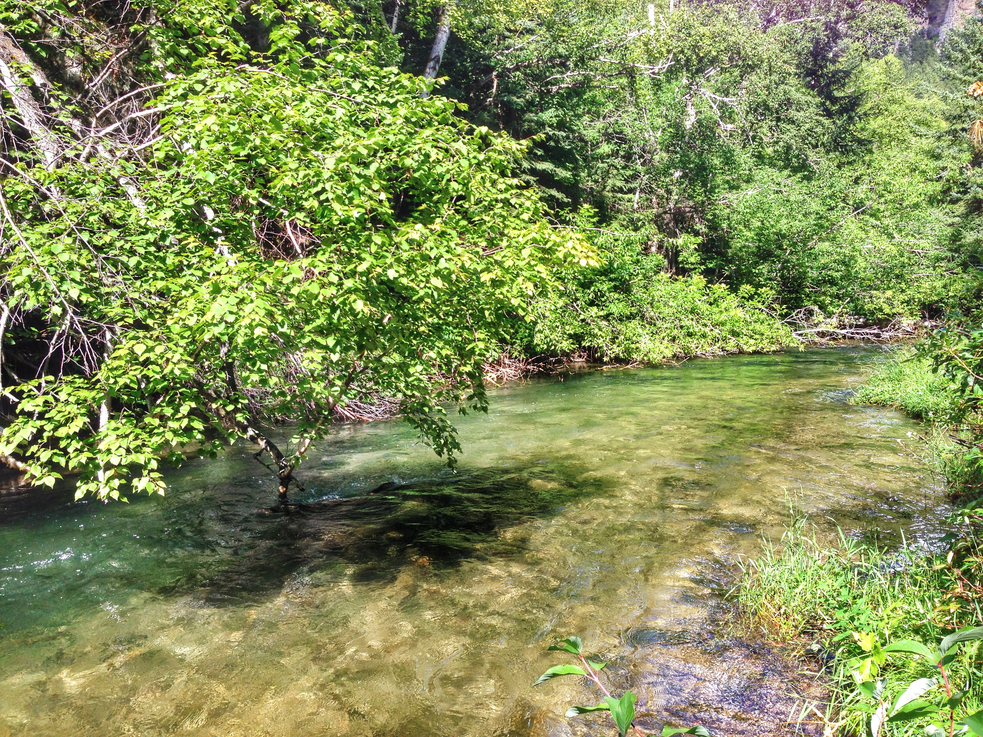Family Hiking In Spearfish Canyon In South Dakota Just