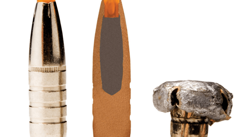 banning lead ammunition