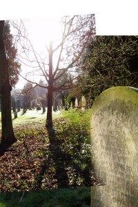 graves-merged1