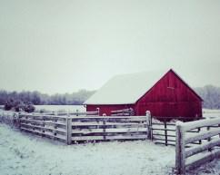 Winter Barn 8 X 10
