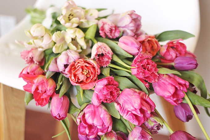 All About Tulips // JustineCelina.com