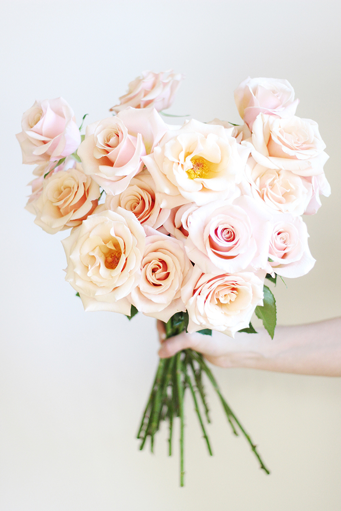 All About Roses | How to Revive Droopy Roses // JustineCelina.com x Rebecca Dawn Design