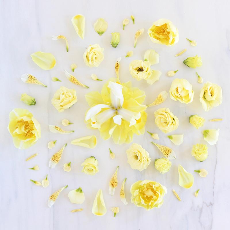Digital blooms may 2017 free desktop wallpapers justinecelina digital blooms may 2017 free desktop wallpapers justinecelina x rebecca dawn mightylinksfo