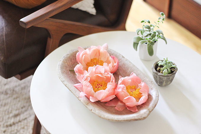 All About Peonies | Purchasing and care tips | Coral Sunset Peonies | Floating Peony Centrepiece // JustineCelina.com x Rebecca Dawn Design