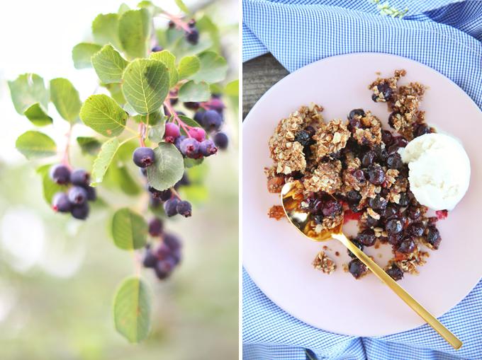 Wild Saskatoon Berry Crumble | Dairy, Gluten & Refined Sugar Free // JustineCelina.com