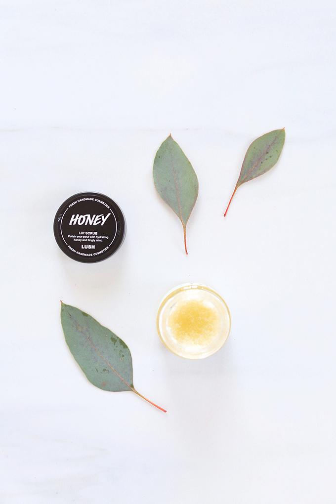 LUSH Honey Lip Scrub Photos, Review | November 2017 Beauty Favourites // JustineCelina.com
