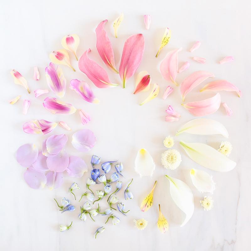 Digital Blooms June 2018