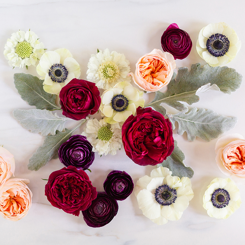 Digital Blooms September 2018 | Free Desktop Wallpapers for Fall with Ranunculus, Garden Roses and Anemones | Pantone Fall / Winter 2018 Free Tech Wallpapers | Design 1 // JustineCelina.com x Rebecca Dawn Design