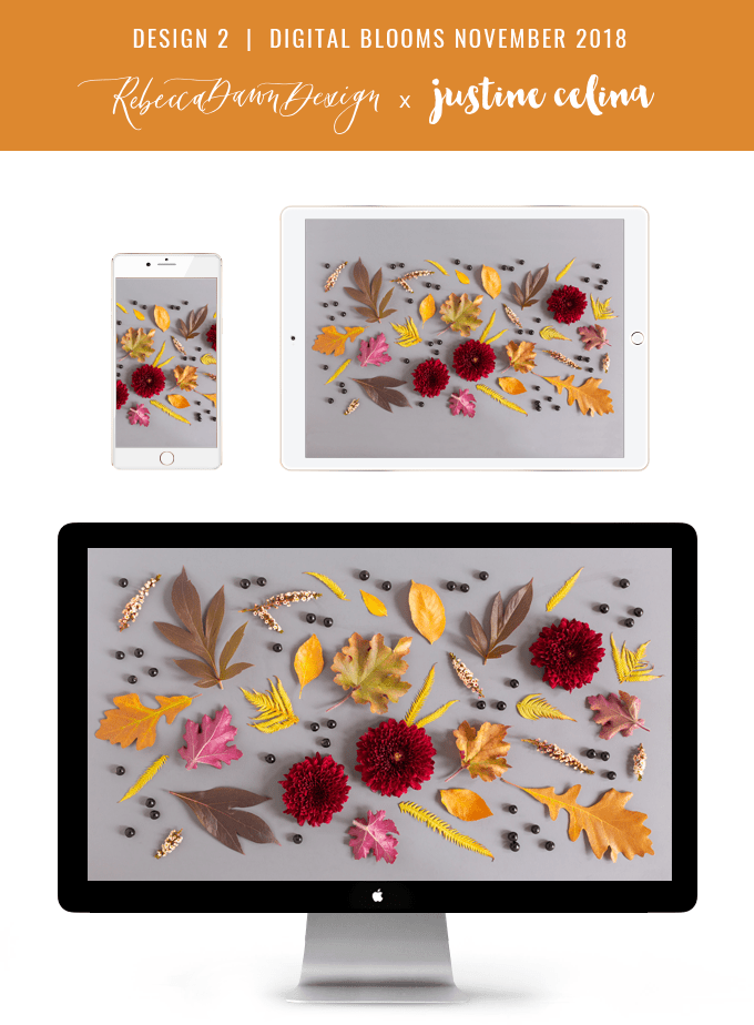 Digital Blooms November 2018   Free Desktop Wallpapers for Fall with Mums, Thrytptomene and an array of foraged autumn leaves and berries   Pantone Fall / Winter 2018 Free Tech Wallpapers   Design 2 // JustineCelina.com x Rebecca Dawn Design
