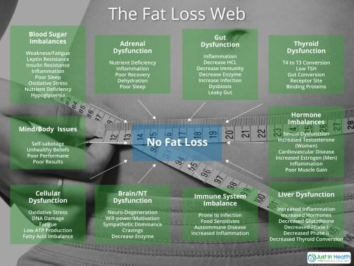 Fat Loss Web