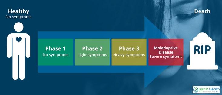 Phases Of Stress Adaptation