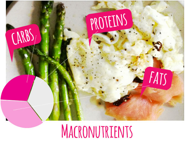 macronutrients-carbs-proteins-fats