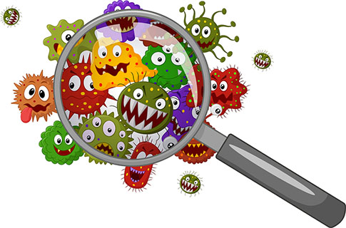 Vector illustration of Cartoon bacteria under a magnifying glass