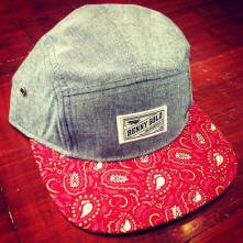 Cloud Paisley 5 Panel