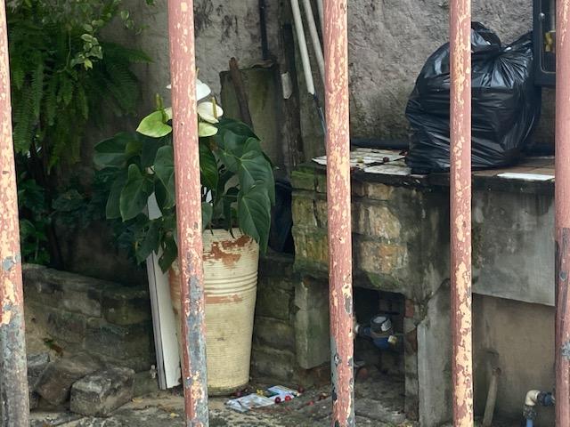 Paisagem Sub Paisagem - 5, Justino, fotografia, 2020.