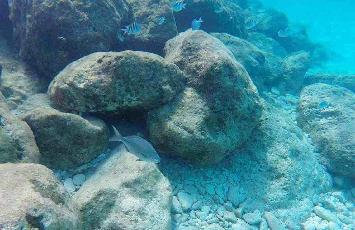 Princess Cays, Eleuthera, Bahamas