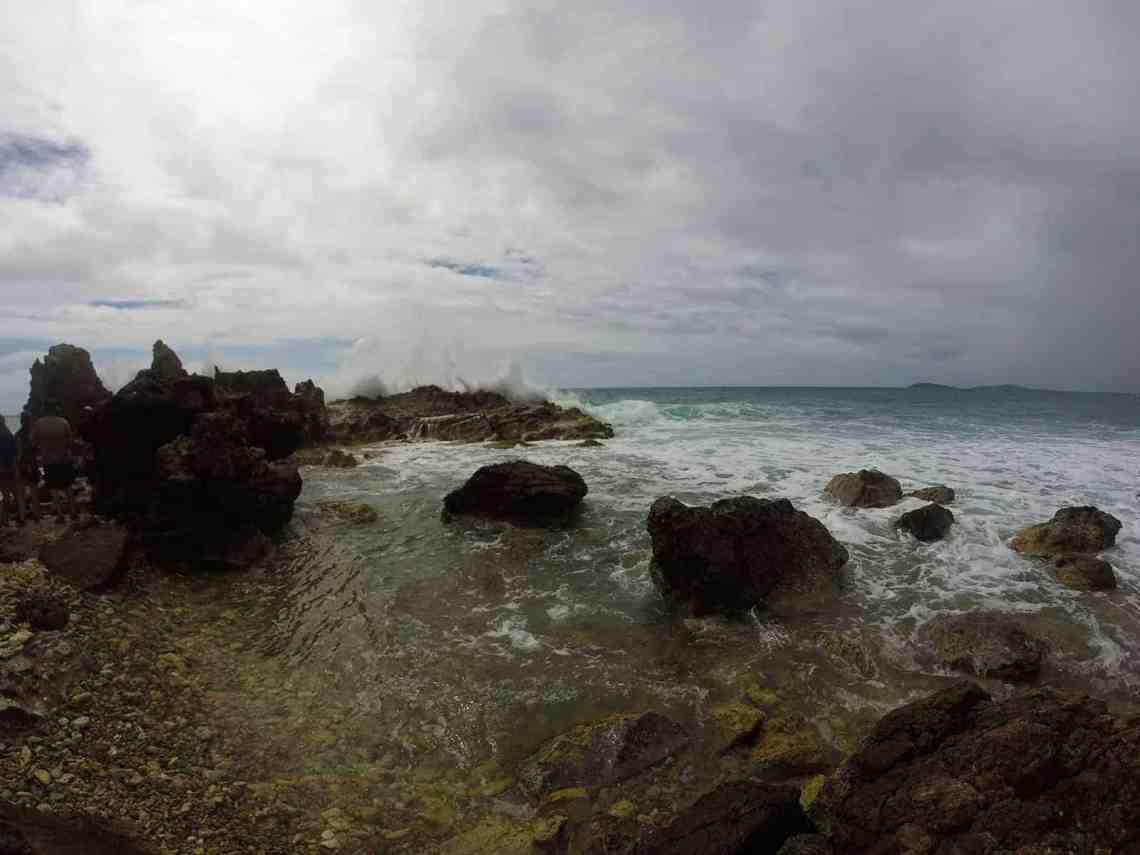 St Thomas Ecotour at Cas Cay Mangrove Lagoon Wildlife Sanctuary