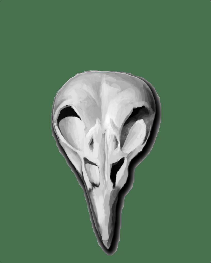 Phoenix Skull