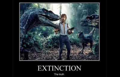 chuck extinction