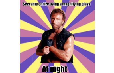 norris ants
