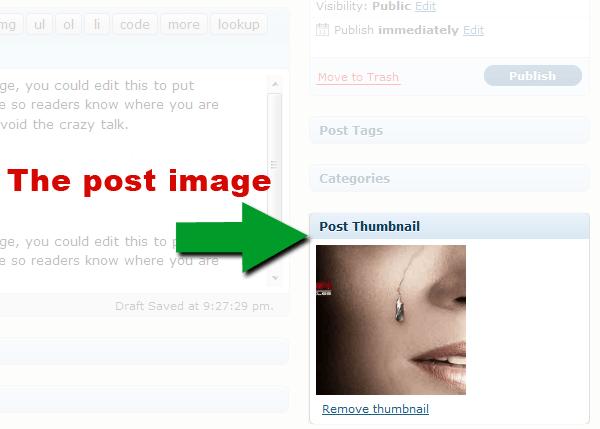 Screenshot of WordPress 2.9's post image uploader
