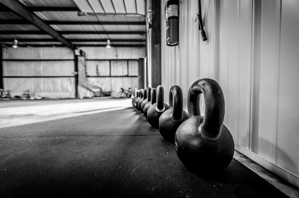 kettlebells lined up against a wall
