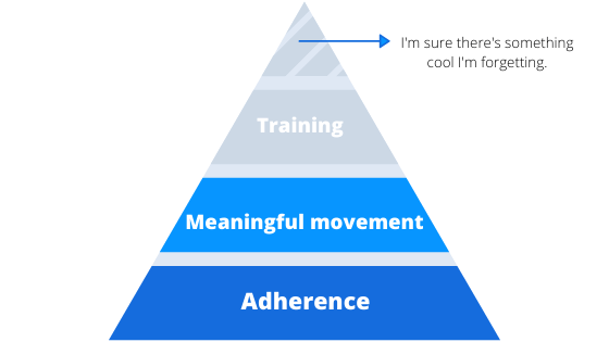meaningful movement pyramid