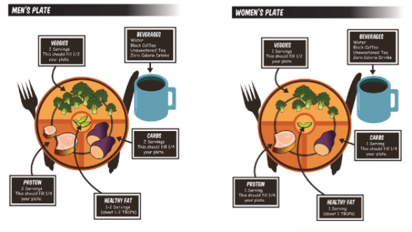 nutrition plate for men and women with portions