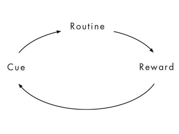 Cue, routine, reward