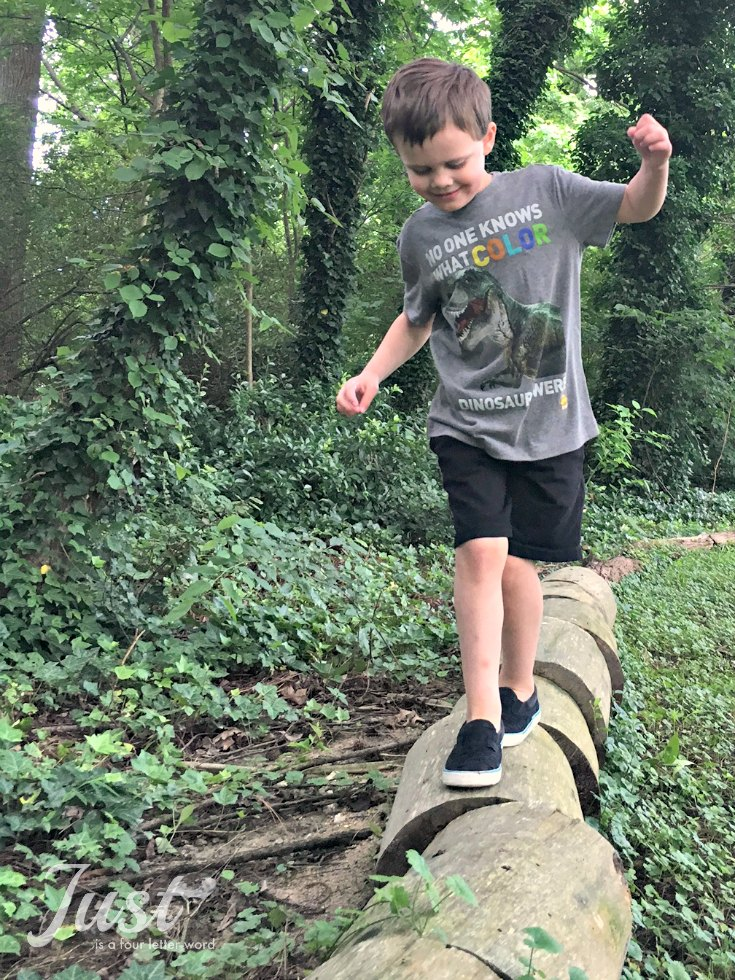 Check out the new Weird But True shirts from National Geographic and Crazy8! My kids love the fun dinosaur fact on this one and they are so soft and great for summer!