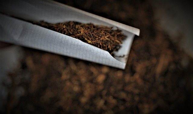 papel de fumar registrador
