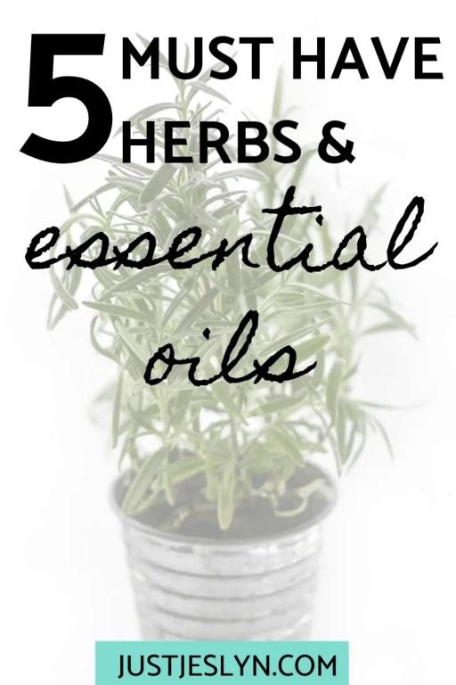 5 Must Have Herbs & Essential Oils | justjeslyn.com