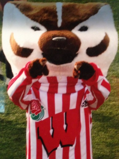 Our Mascot Bucky Badger