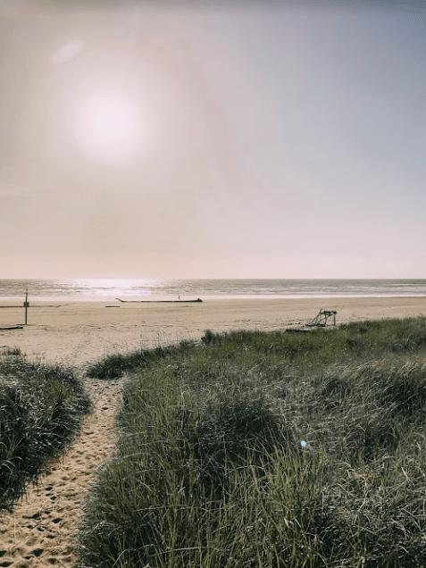 Screen Shot 2019-06-08 at 6.42.08 PM