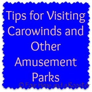 tips for visiting carowinds