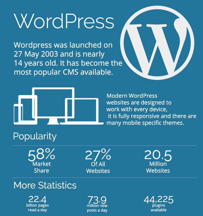 what is wordpress - ultimate guide & infographic