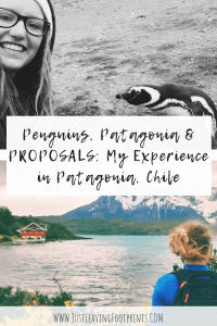 Penguins, Patagonia & Proposals: My Experience in Patagonia, Chile