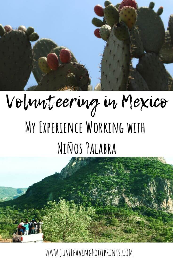 Volunteering in Mexico: My Experience working with Niños Palabra