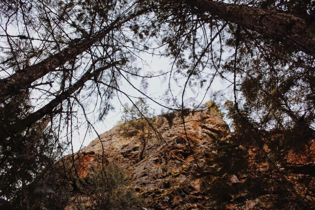 Underrated Hike in Kelowna | Scenic Canyon Regional Park