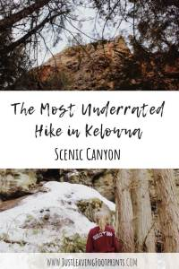 The Most Underrated Hike in Kelowna: Scenic Canyon Regional Park