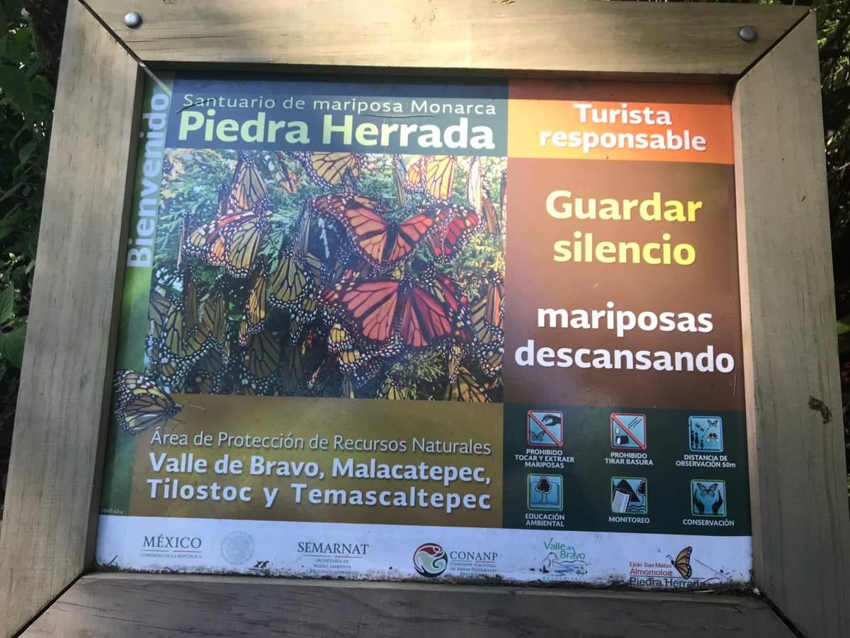 Wildlife Tours | Gift Experiences