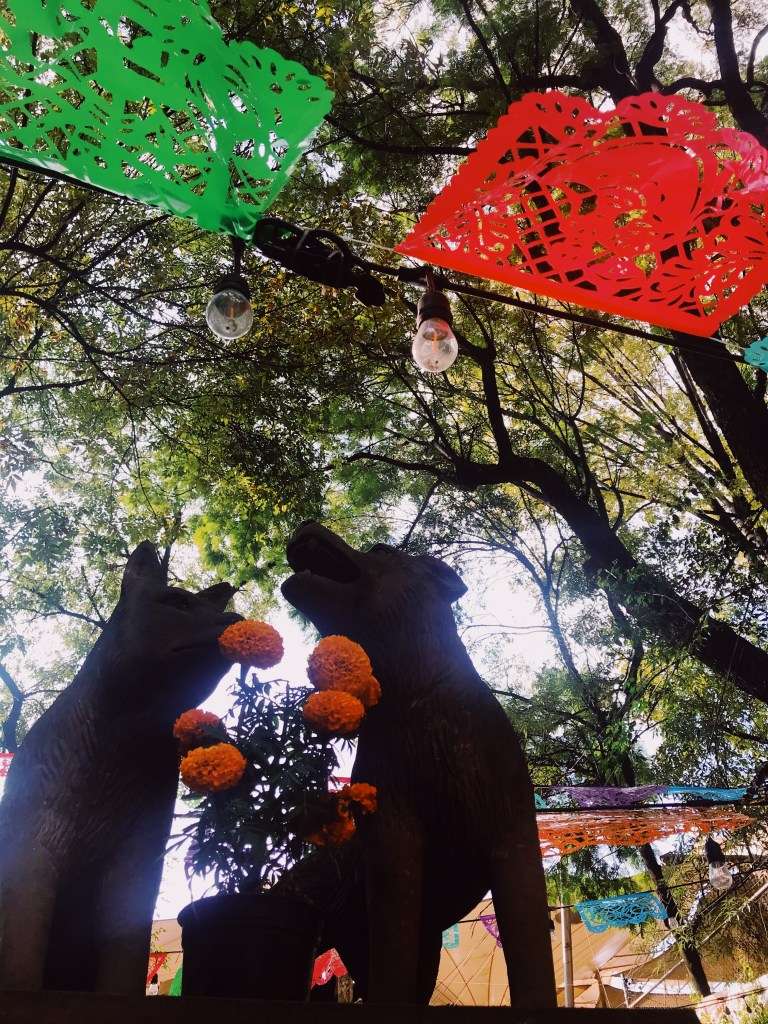 Coyoacán | Day of the Dead in Mexico City